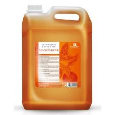 Koncentruotas šampūnas mandarinų kvapo, 5000ml
